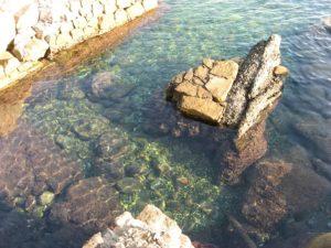 жизнь после пенсии - море, праздник